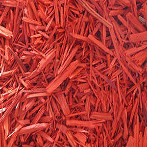 red sandalwood | Lal Chandan