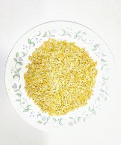 Barley-Buy Ayurvedic herbs online
