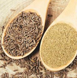 Organic Cumin Seed   Buy Ayurvedic Herbs & Products Online   Certified by Ayurveda Doctors   100% genuine   Trustherb Ayurvedic products marketplace