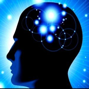 Brain and Memory Wellness