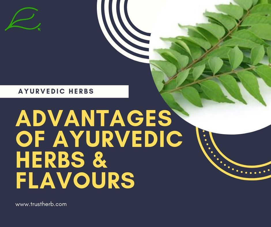 advantages of ayurvedic herbs | Buy Ayurvedic Herbs & Products Online | Certified by Ayurveda Doctors | 100% genuine | Trustherb Ayurvedic products marketplace