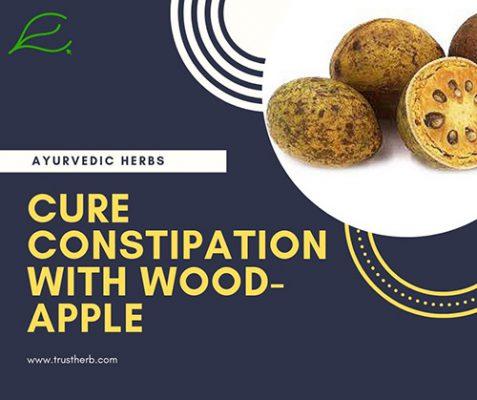 Wood apple- correa