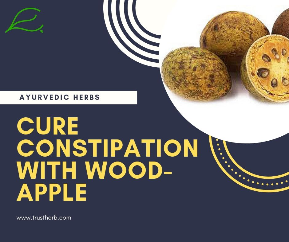 cure constipation with wood apple | Buy Ayurvedic Herbs & Products Online | Certified by Ayurveda Doctors | 100% genuine | Trustherb Ayurvedic products marketplace