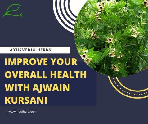 Benefits of Ajwain khurasani