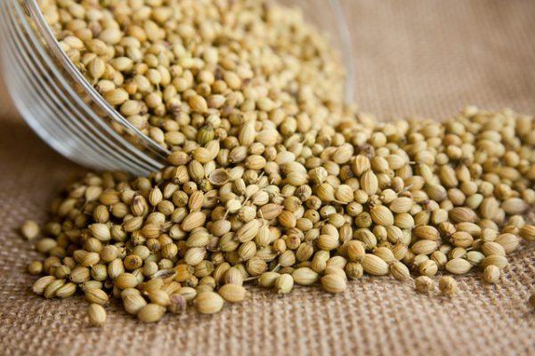 health benefits of coriander